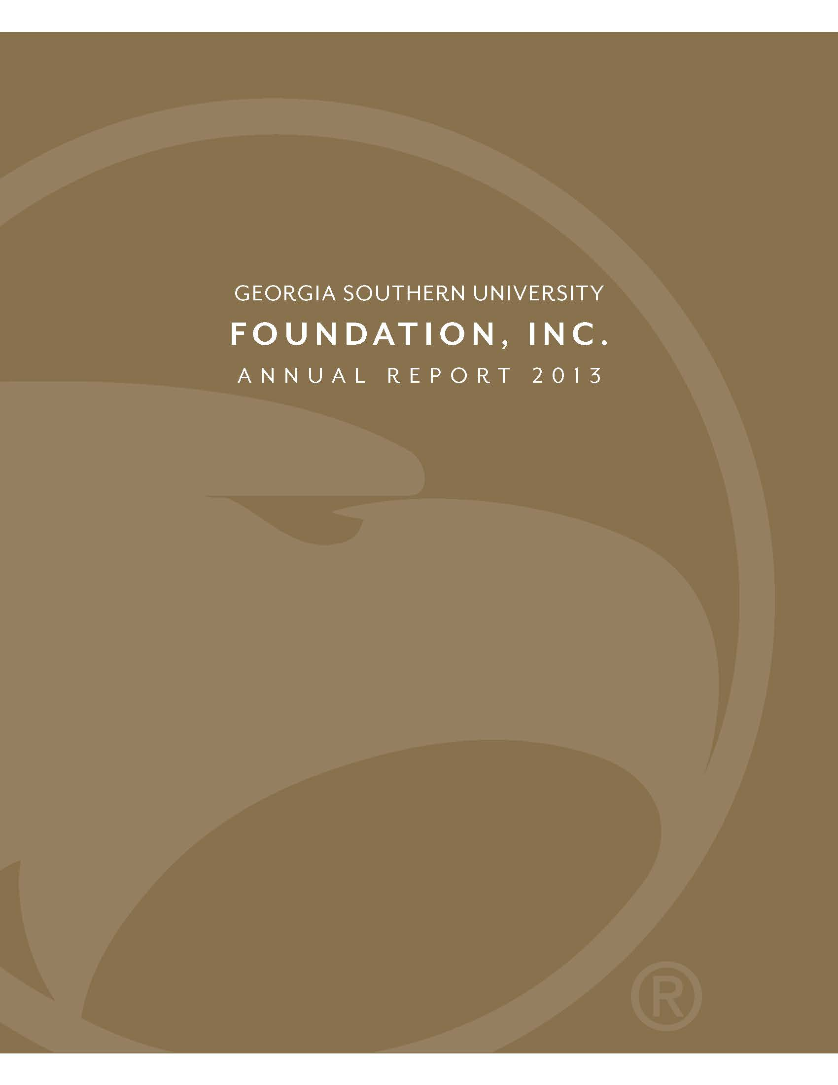2013 Annual Report with image of Georgia Southern academic logo